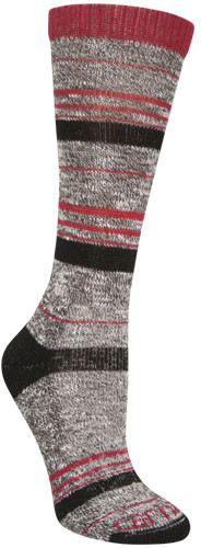 Carhartt Women's Merino Wool Blend Slub Stripe Sock